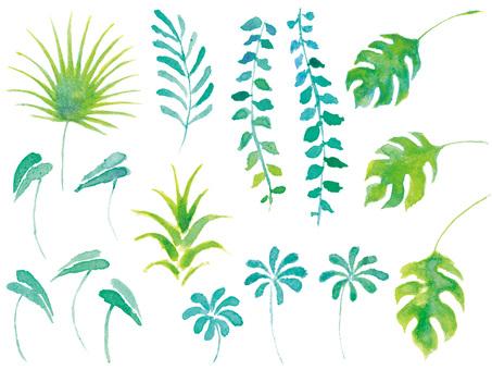 Tropical leaf watercolor set green