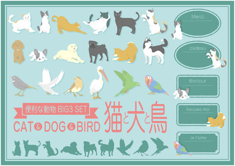 Popular animal decoration <Cat, dog, bird>