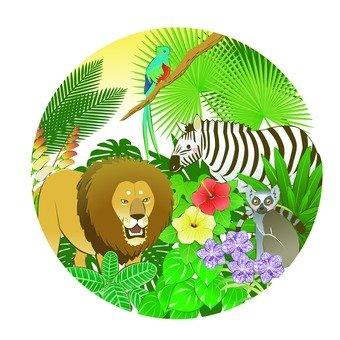 정글 아이콘