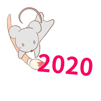 2020 mouse