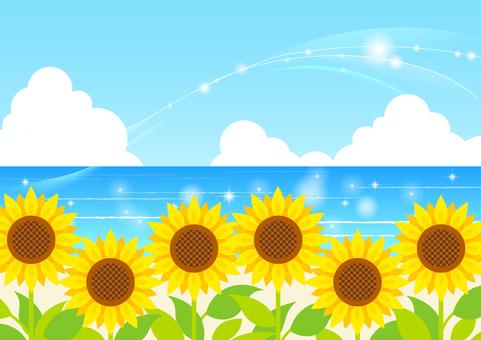 夏季图像素材233