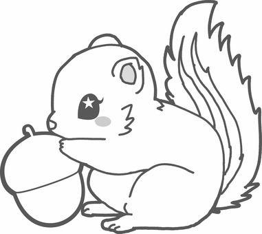 Squirrel - Coloring