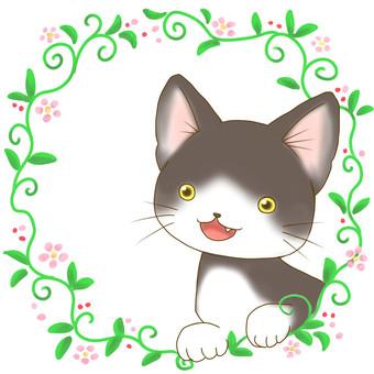 Hachiwari cat - grass frame