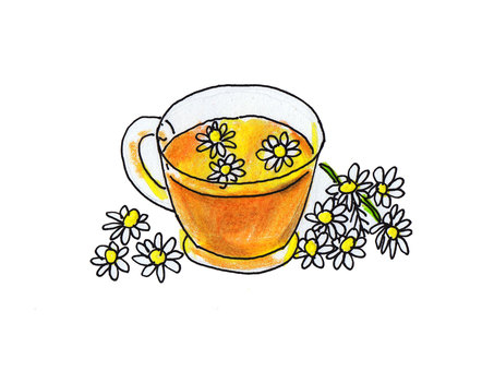 Chamomile tea (part 2)