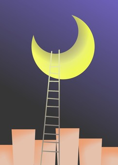 Moonlit night and ladder