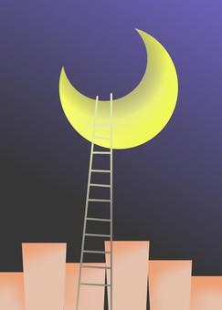 달밤 및 사다리