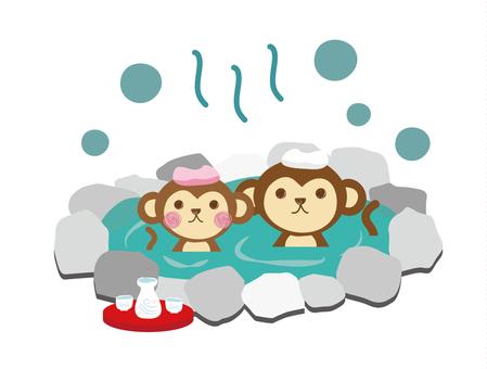 Bath _ Monkey