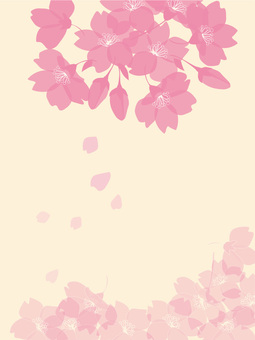 Sakura silhouette background 7