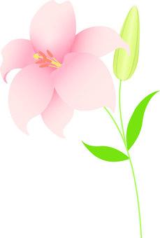 유리 _ 꽃과 꽃 봉오리