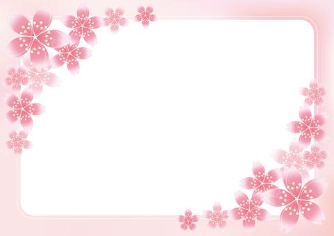 Sakura Sakura & Board 19