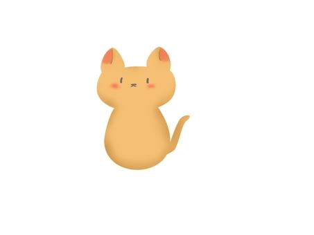 고양이 (고양이)
