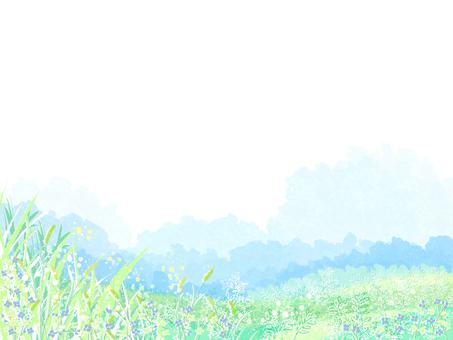 Summer landscape 5