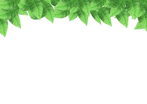 水彩 葉 上フレーム