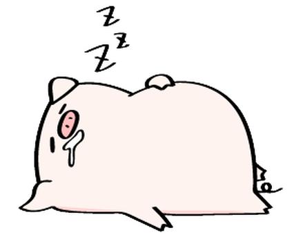 爆睡のブタ吉