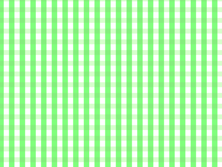 Gingham check green