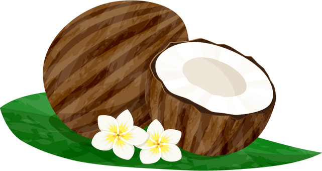 Coconut _ Plumeria