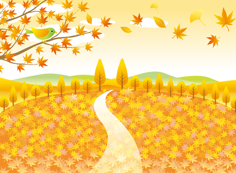 Scenery of carpet of autumn leaves 2