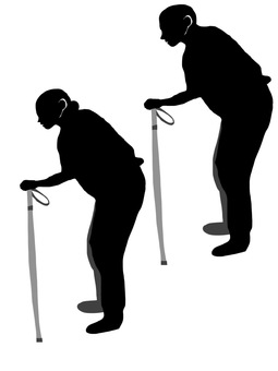 Silhouette of the cane stick