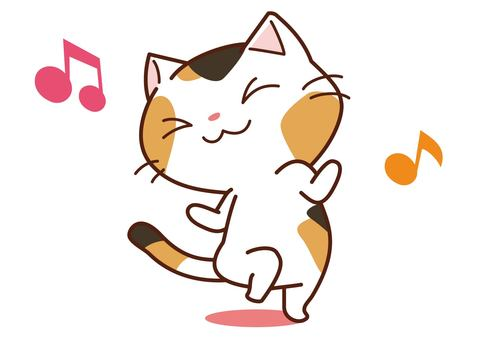 Dancing trilogy cat