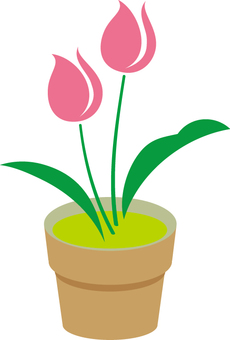 Free tulip cute 04