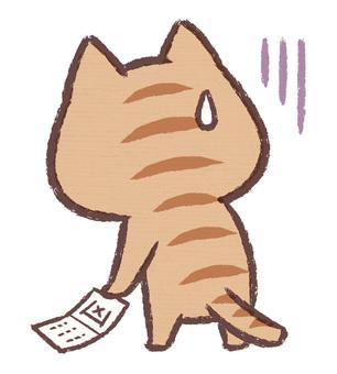 Omikuji貓