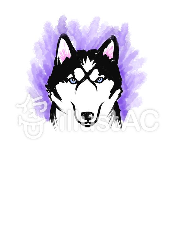 シベリアンハスキー 世界の犬イラスト No 1271650無料イラスト