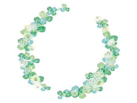 White clover 11