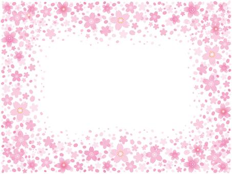 Cherry blossom background illustration