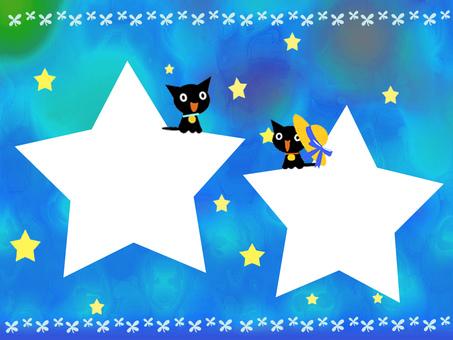 별과 고양이