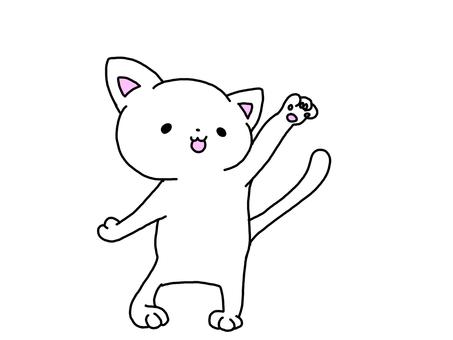 Cat raising hand