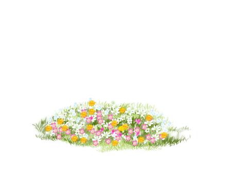 Small field
