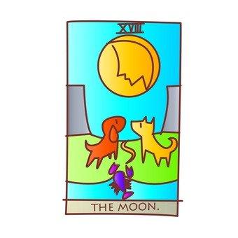 타로 카드 달