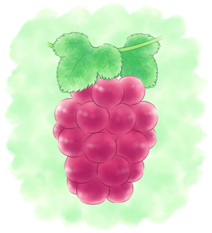 Round grapes reddish with background