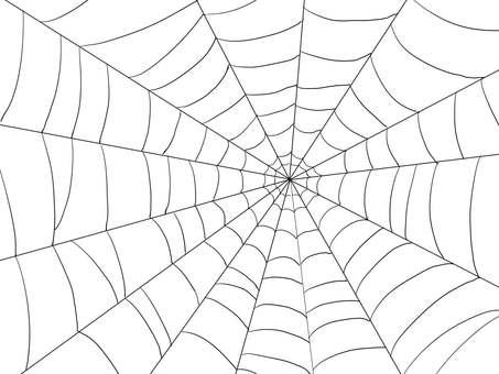 Spider web nest