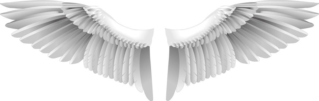 鳥の羽シルエット イラストの無料ダウンロードサイトシルエットac