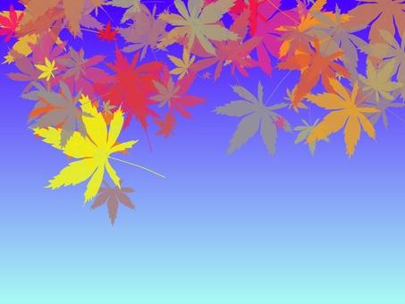 Autumn leaves empty 4