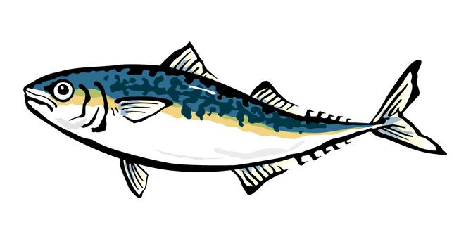 Mackerel alone