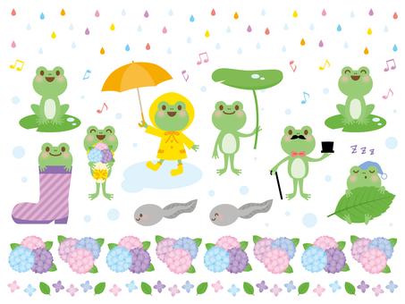 Frogs and rainy season
