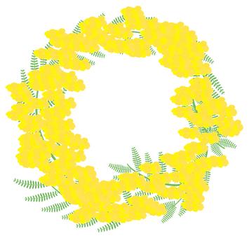 Mimosa's wreath