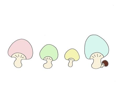 화려한 버섯