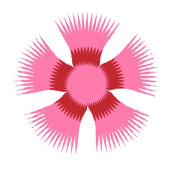 패랭이꽃 ①