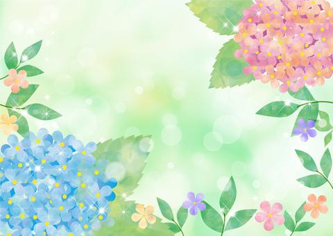 수국 꽃 파스텔 _ 그린 배경