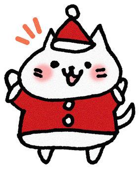 크리스마스 고양이 3
