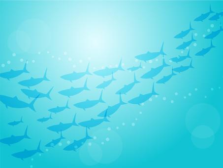 Balık okulunun arka planı