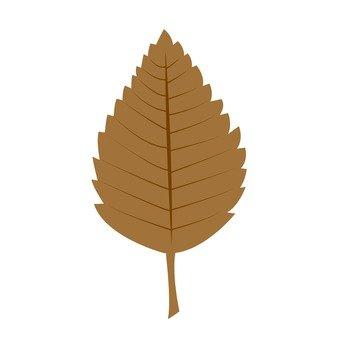 낙엽 (차) 1