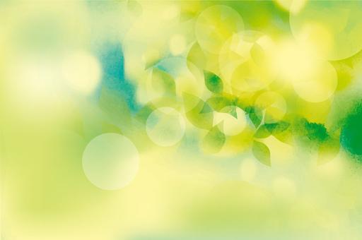 光の中のフレッシュ緑