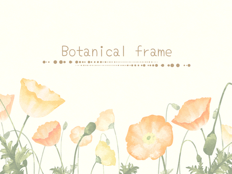 Poppy's frame