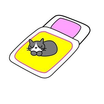 Cat and Futon