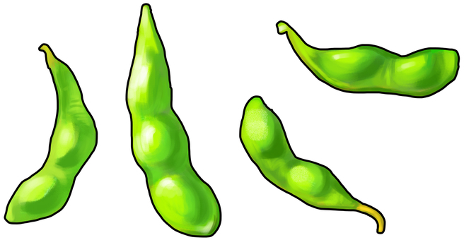 Edamame set with outline