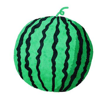 Watercolor ingredients series watermelon